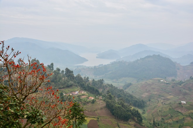 Lake Bunyonyi from the road I rode three days running, so lovely was it!