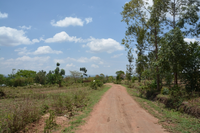 This is an international road between Kenya and Uganda!