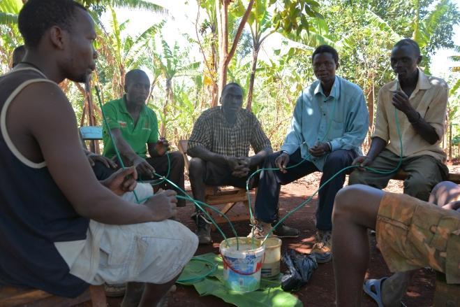 Drinking komek in Sipi